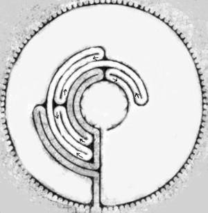 chartres labyrinth öffnungszeiten